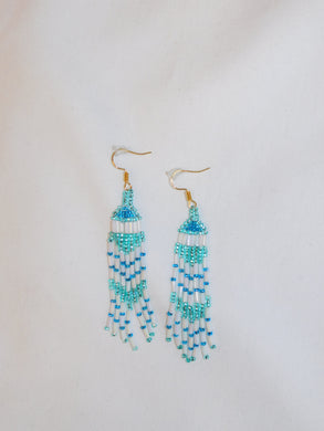 Earrings - Crystal Roy