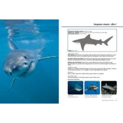 Marine Species Guide - BOOKS