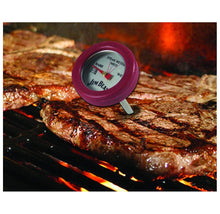 [4-Pack] Jim Beam Poultry and Steak Mini Thermometers  - UntilGone.com