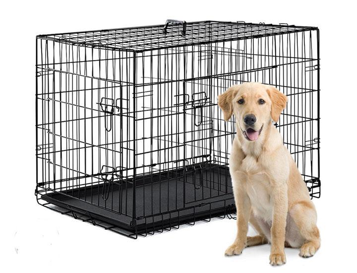 Folding Pet Crate with Removable Tray & Divider