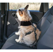 Furhaven Dog Car Seat Safety Belt with Clip Dog Supplies