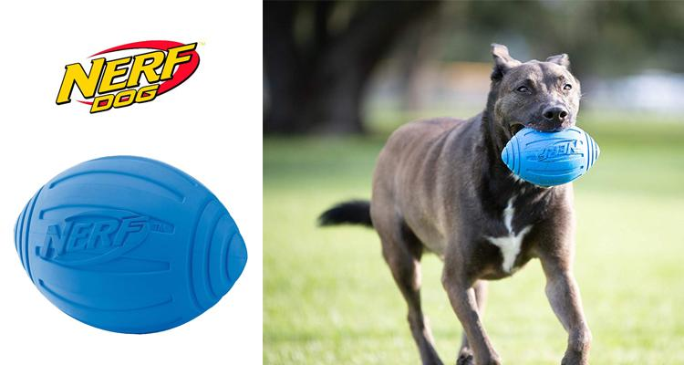 [2-Pack] Nerf Dog Toy Football with Squeaker (Blue Size Medium)  - UntilGone.com