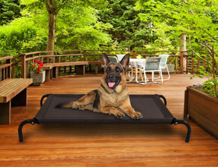 Furhaven Steel Frame Elevated Cot-style Pet Bed