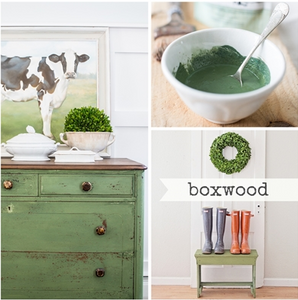 Boxwood - 1 Quart Milk Paint