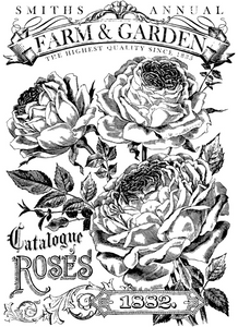 Catalogue of Roses 24x33 Paintable Decor Transfer