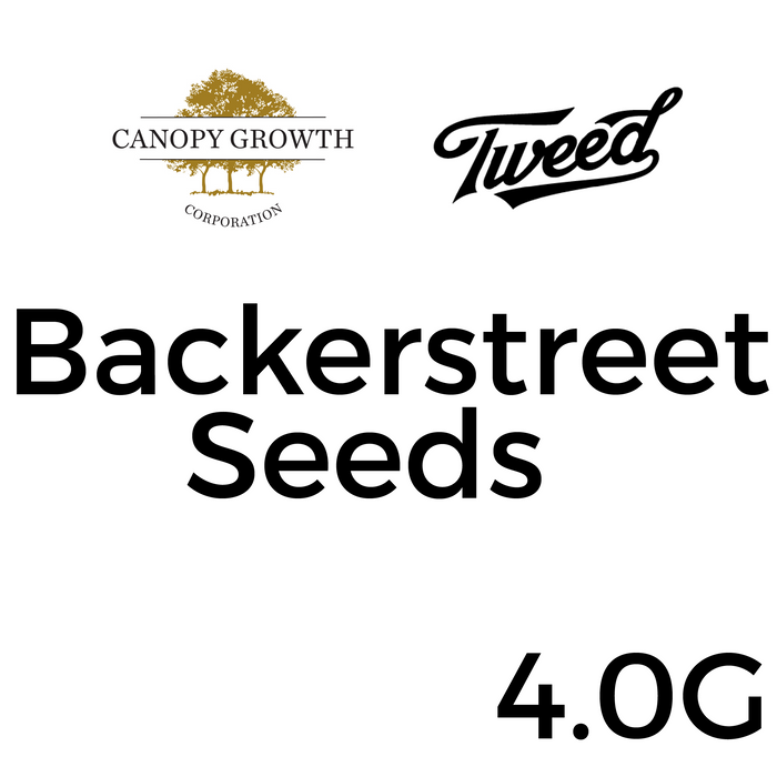 Tweed Bakerstreet Seeds - 4 Pack
