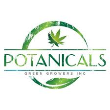 Benchmark Botanicals Think Fast