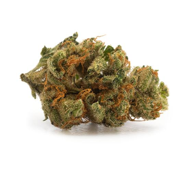 Captain's Choice Sunshine Sativa