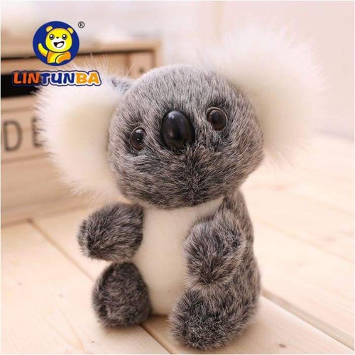Super Cute Small Koala Bear Soft Toy- Everyone Wants One Of These - J and p hats Super Cute Small Koala Bear Soft Toy- Everyone Wants One Of These