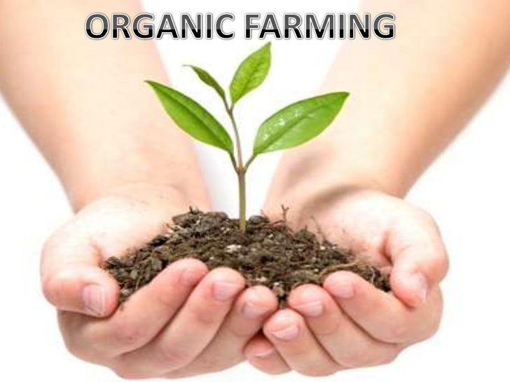 Why should we care about organic farming?
