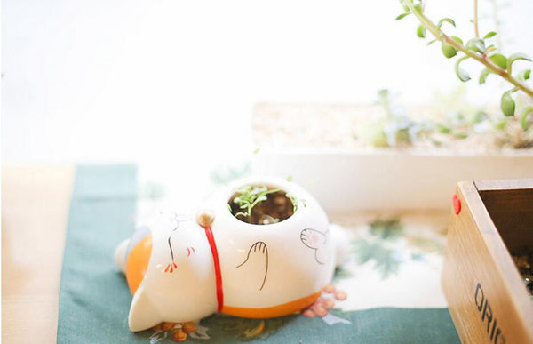 Sensei Cute Cat Flower Pots