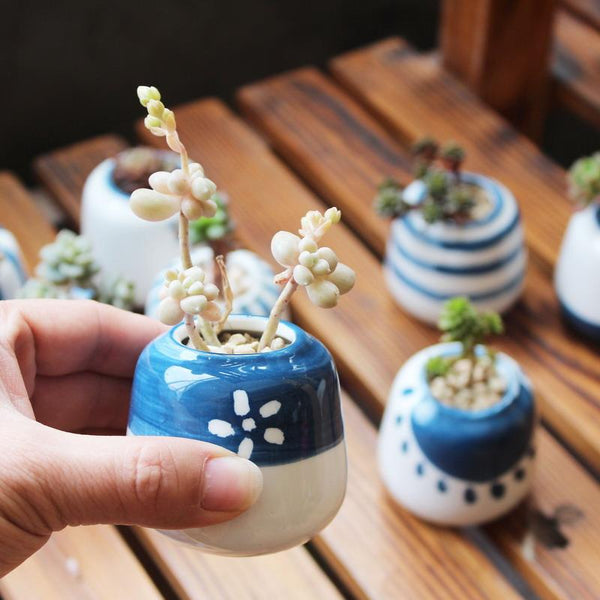 (8 Pcs/ Set) Blue Pattern Handmade Ceramic Plant Pot - Other