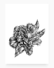 Load image into Gallery viewer, Botanical n.04 | A4 Giclée Fine Art Print