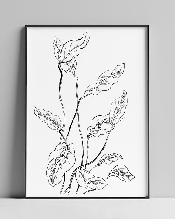 Botanical n.05 | Ink on paper painting