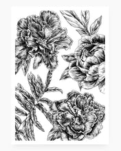 Load image into Gallery viewer, Botanical n.06 | 70 x 50 cm Giclée Fine Art Print