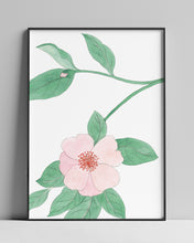 Load image into Gallery viewer, Camellia n.01 | A4 Giclée Fine Art Print