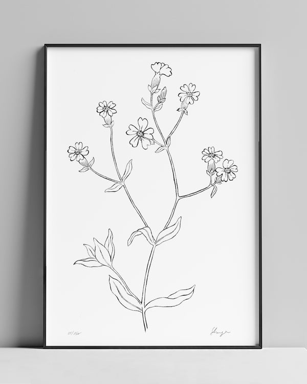 Wild flowers N.01 | A4 Limited Edition Giclée Fine Art Print