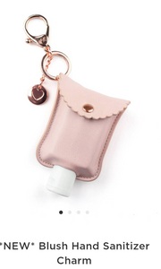 Hand Sanitizer Set with Key chain Pouch
