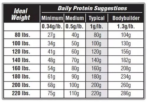 Suggested Protein Intake Per Day
