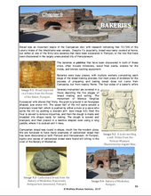Pompeii and Herculaneum: Student Workbook (2019 Second Edition) Pre-order