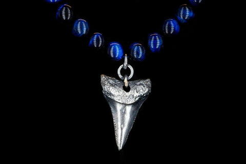 BLUE TIGER EYE G.W SHARK TOOTH NECKLACE