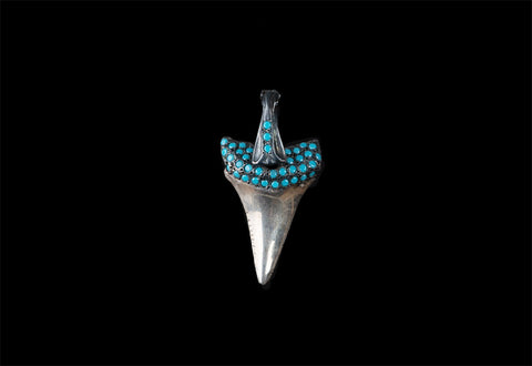 ROCK STAR SHARK TOOTH (CON TURQUESA)