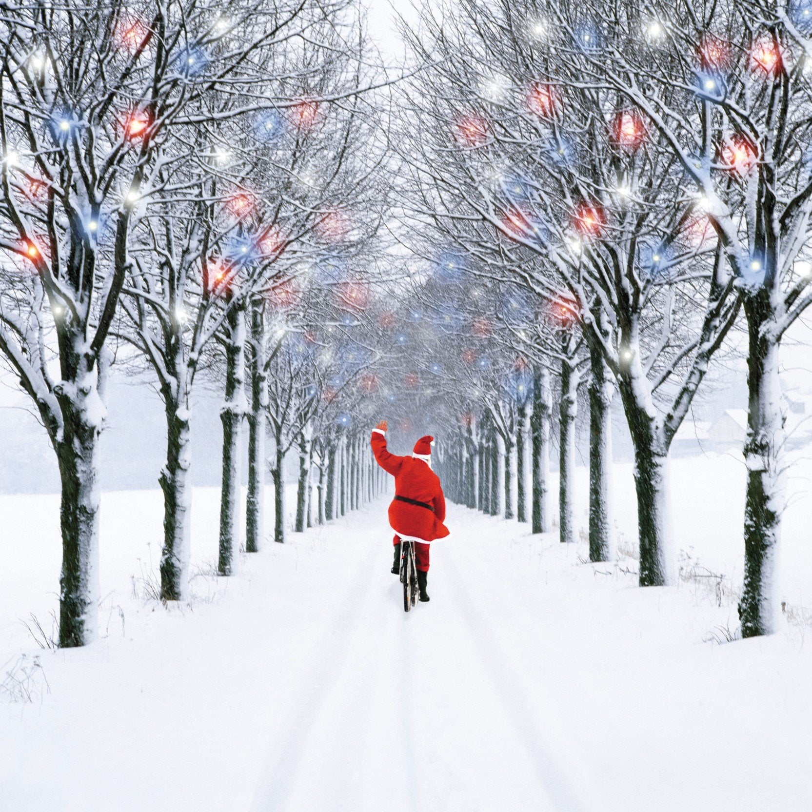 Christmas Card: Snowy Avenue