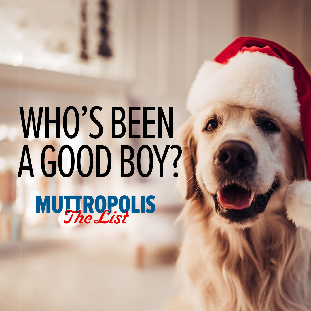 MUTT'S UP: Let's Get the Holidays Started!