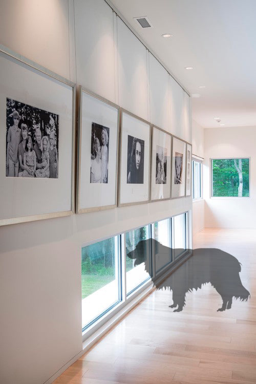 Dog-Friendly Home Design