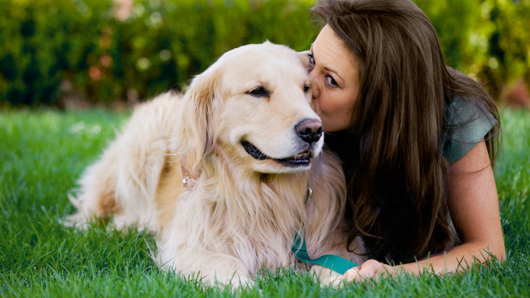 MUTT LOVE: 5 Ways to Spend Mother's Day with your Dog