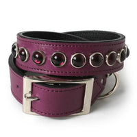 Purple Single Row Dog Collar