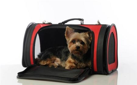 Red Kelle Dog Carrier