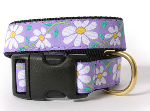 White Daisy Dog Collar