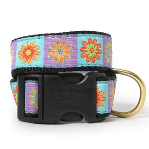 Daisy Lola Dog Collar