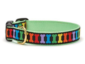 Rainbow Bones Dog Collar