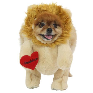 Pandaloon Lion Dog Costume