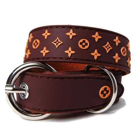 Luxury Star Rubberized Dog Collar