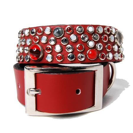 Mixed Stones on Red Leather Dog Collar