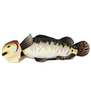 Fly and Fetch Fish Dog Toy