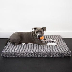Animals Matter® Katie Puff® Ortho Rectangle Luxury Dog Bed