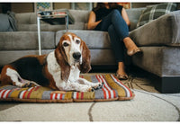 Horizon Chill Pad Dog Mat