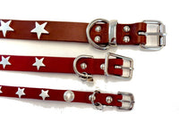 Silver Stars Leather Dog Collar - Muttropolis