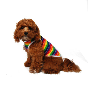 Rainbow Stripe Dog Tank