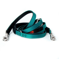 Cruiser Dog Leash