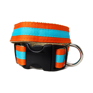 Orange and Blue Shep Dog Collar