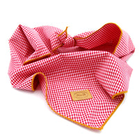 Red Gingham Pet Bandana