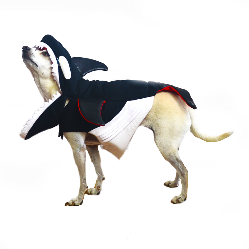 Killer Whale Dog Costume - FINAL SALE