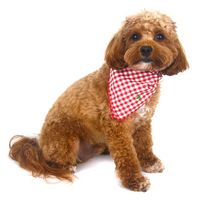Red Check Embroidered Christmas Tree Dog Bandana - FINAL SALE