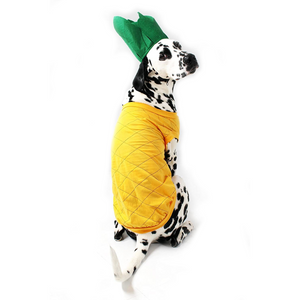 Pineapple Dog Costume