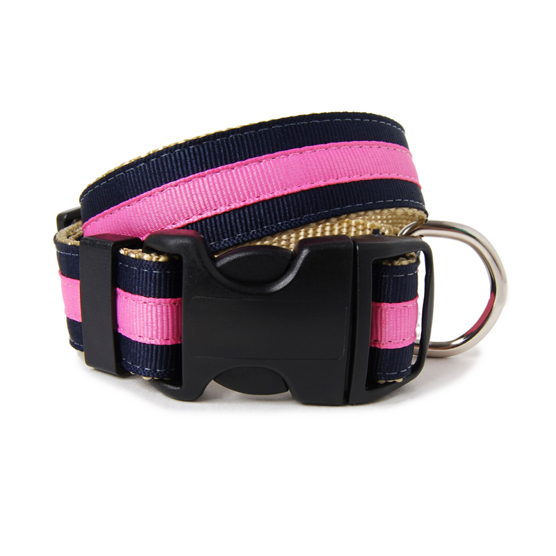 Navy and Pink Jolene Dog Collar